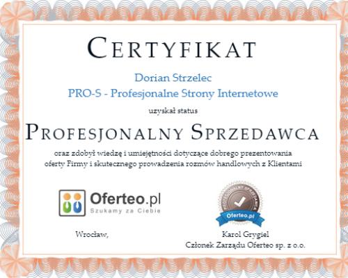 https://pro-s.net.pl/wp-content/uploads/2020/02/certyfikat-1-500x400.png